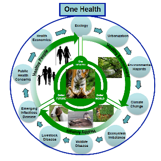One Health in Nepal